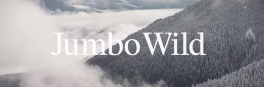 jumbo-wild-patagonia